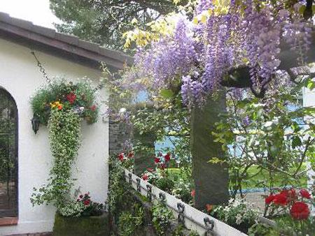 Terrazzi e Giardini Pensili - Studio Cammelli